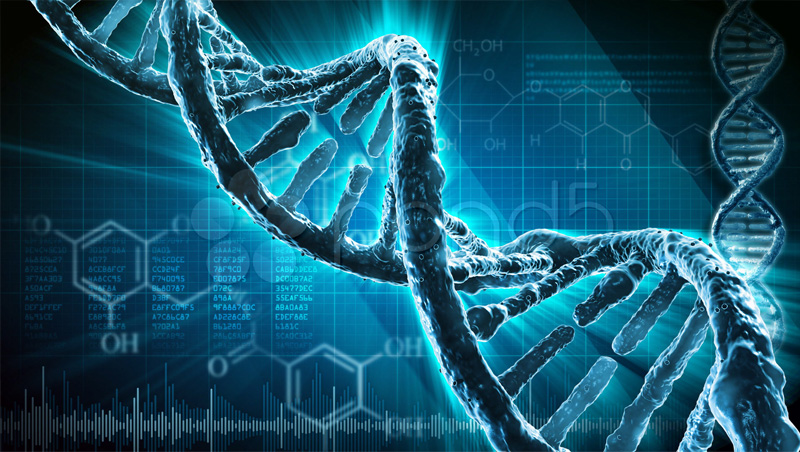 dna-biocore-solutions